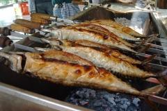 Fischfest2003001