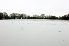 Weissweier-1-Foto-2